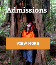 nav-admissions