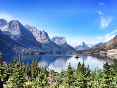 Dragonfly Transitions for  Struggling Young Adults - Glacier National Park Adventures