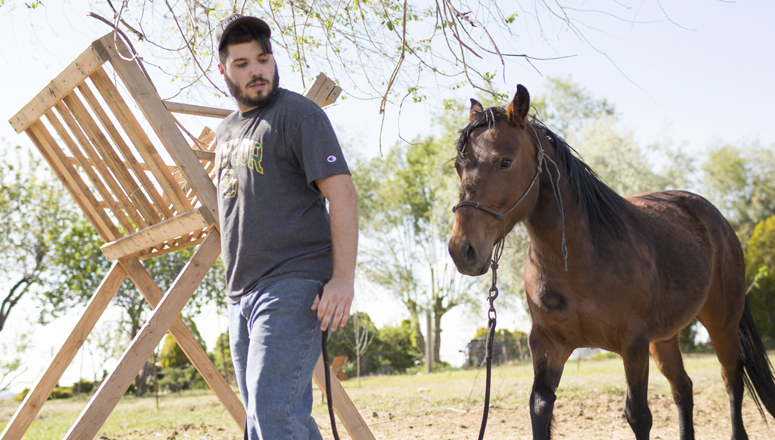 guy with horse
